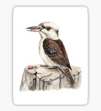Kookaburra Eating Sticker