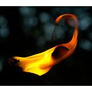 Flame On! by Imagery