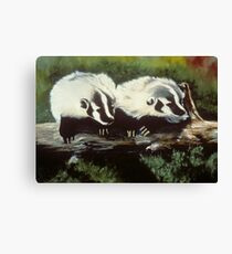 Brother Badger Canvas Print
