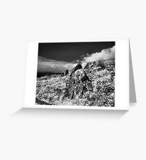 Wolf Ridge, Marin Headlands Greeting Card