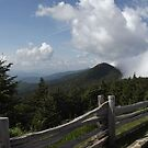 Mount Mitchell NC by William Swartout Jr