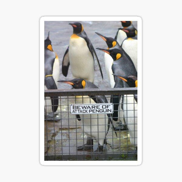 Warning - attack penguins! Sticker