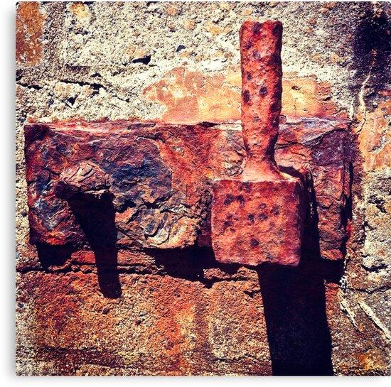 Rusty Door Hinge by Tim Topping