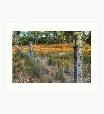 Dingo Proof Fence.  Art Print