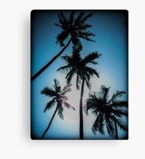 Chilling Out In Sri Lanka Canvas Print