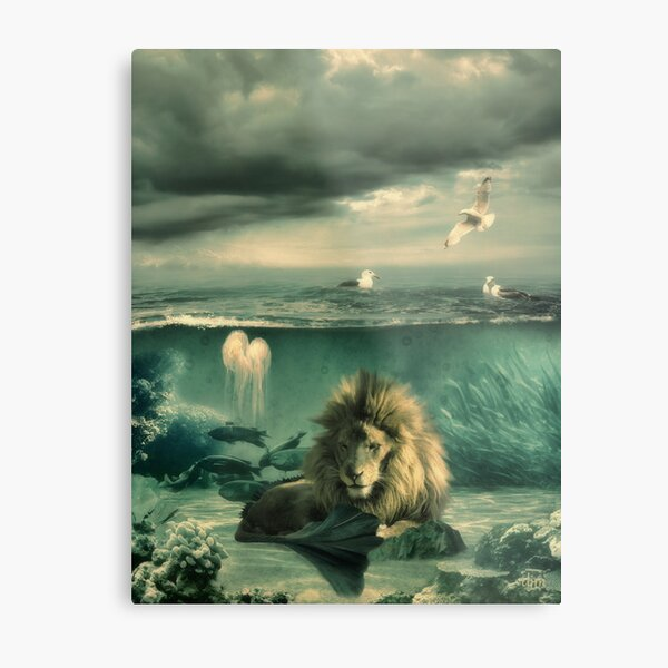 Sea Lion Metal Print