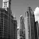 White City - Chicago (B&W) by William Dyckman