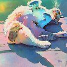 """Morning Light"" by Colleen Reynolds"