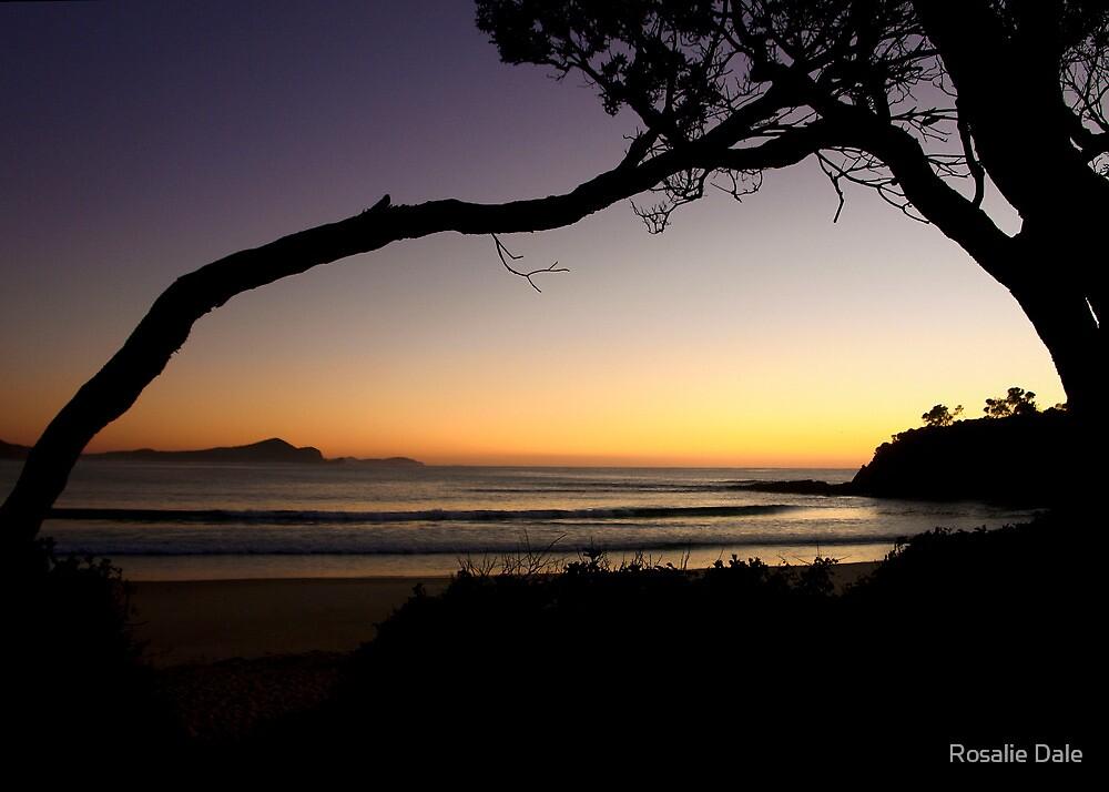 First light ~ Seal Rocks, NSW by Rosalie Dale