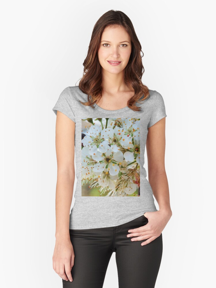 Tree blossoms Women's Fitted Scoop T-Shirt Front