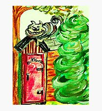 Outhouse Sentinel Photographic Print