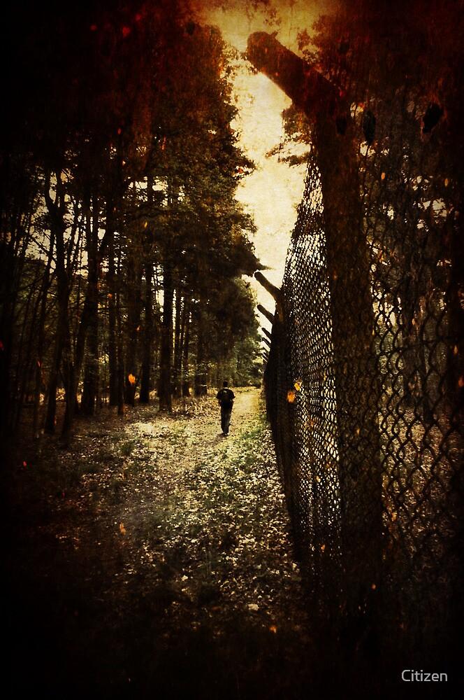Fire walk with me by Nikki Smith