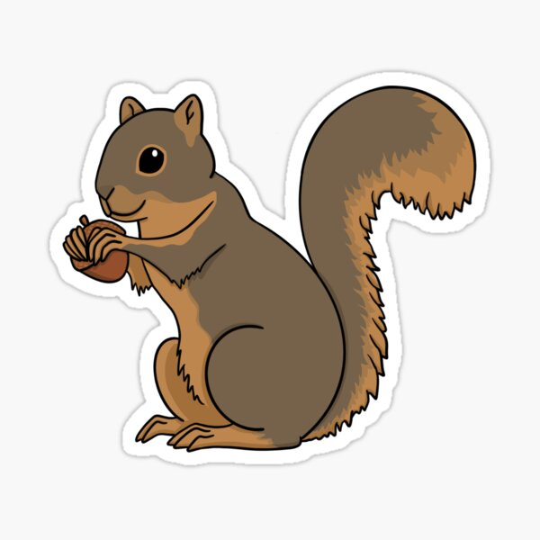 Fox Squirrel Eating Acorn Sticker