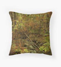 Unami Creek Feeder Stream in Autumn - Green Lane PA Throw Pillow