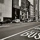 Bus Zone by Leanne Kelly