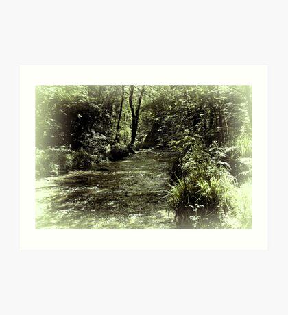 Emerald River Art Print