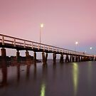 Dusk..for Jessica. Wellington Point Qld Australia by Beth  Wode