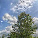 Painting the Sky by Michael Degenhardt