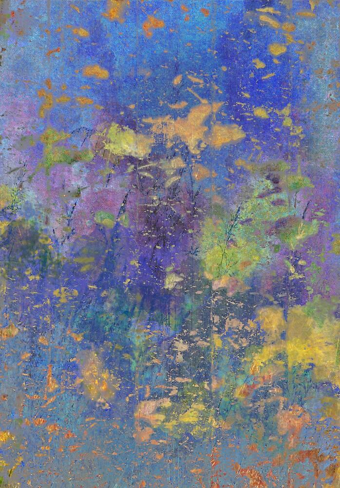 Meadow by David North