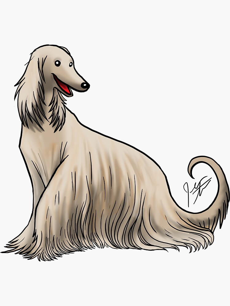 Afghan Hound by jameson9101322
