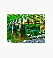 lake placid HDR Art Print