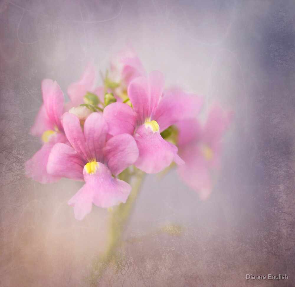 Pastels and Texture by Dianne English