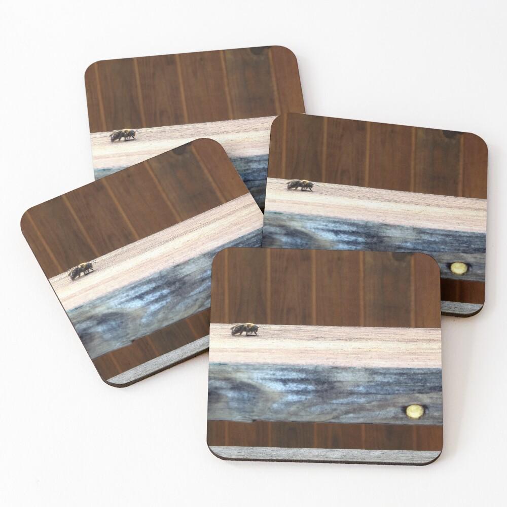 Carpenter Bee on Wood Coasters (Set of 4)
