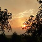 Sunrise by Lisa Sall