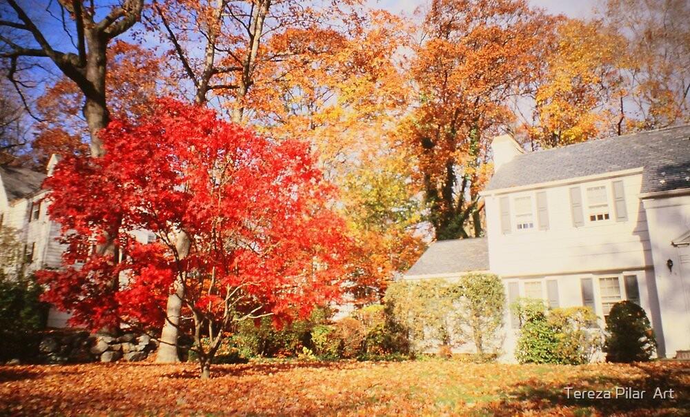 NY autumn by terezadelpilar ~ art & architecture