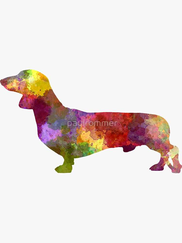 Dachshund in watercolor by paulrommer