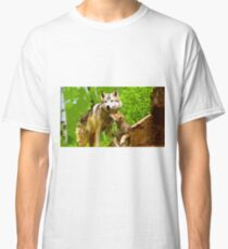 Wild nature - wolves Classic T-Shirt