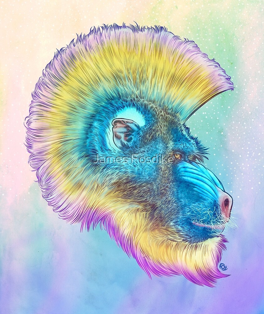 Mohawk Mandrill IN SPACE! by James Fosdike