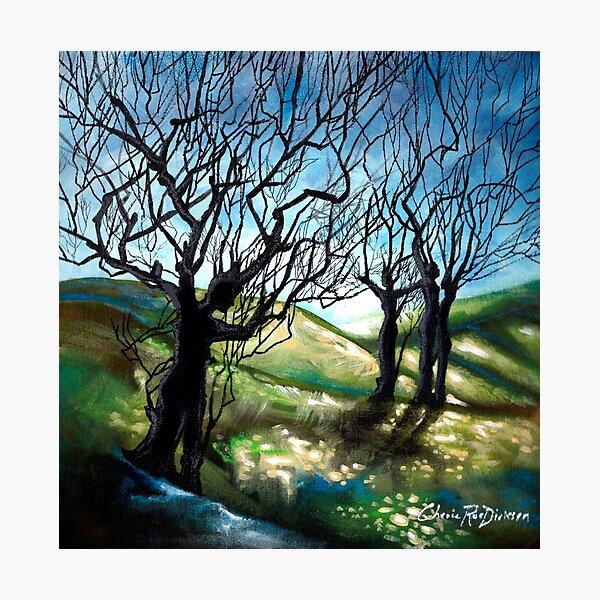 Tree Figures Photographic Print