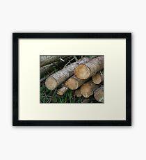 Holz Framed Print