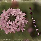 Believe by DebbieCHayes