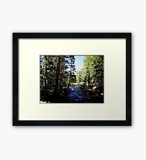 There's A Quiteness In The Shade Framed Print