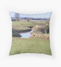 the herons habitat Throw Pillow