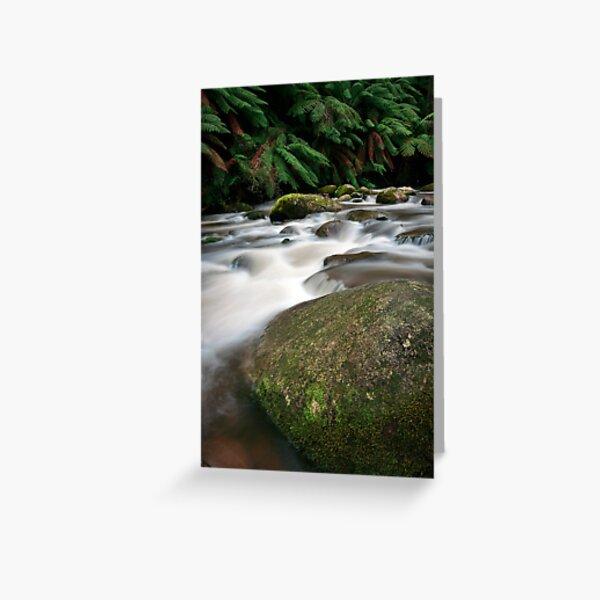 Rocks and Rainfall - Noojee, Victoria, Australia Greeting Card