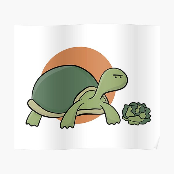 the single-eyed turtle. Poster