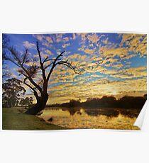South Esk sunrise - Longford, Tasmania, Australia Poster