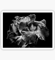 Backyard Flowers In Black And White 2 Sticker