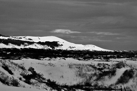 Dune by Harry Wakefield