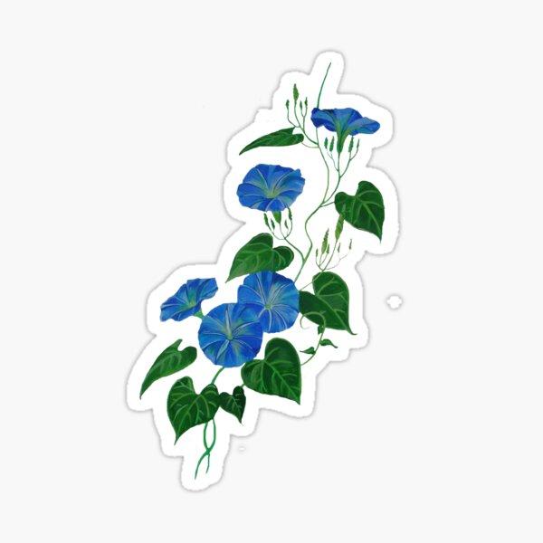 Victorian Style Blue Bindweed Wildflower  Sticker