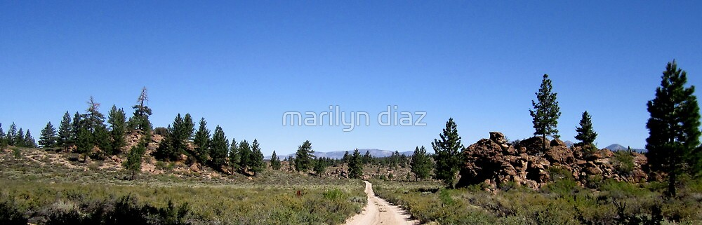 The Dirt Road Between by marilyn diaz