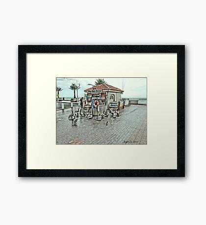 The Bait House (HDR) Framed Print