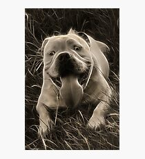 Clyde Photographic Print
