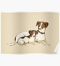 Jack Russels Poster