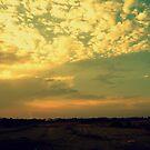 When the sun goes down by Irene  van Vuuren