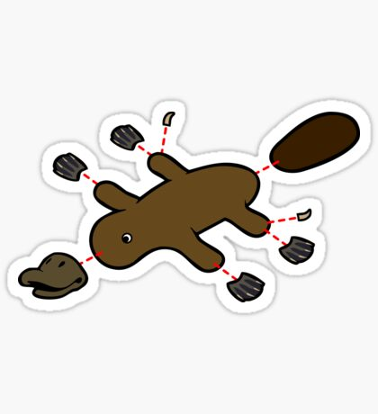 Platypus Diagram Sticker