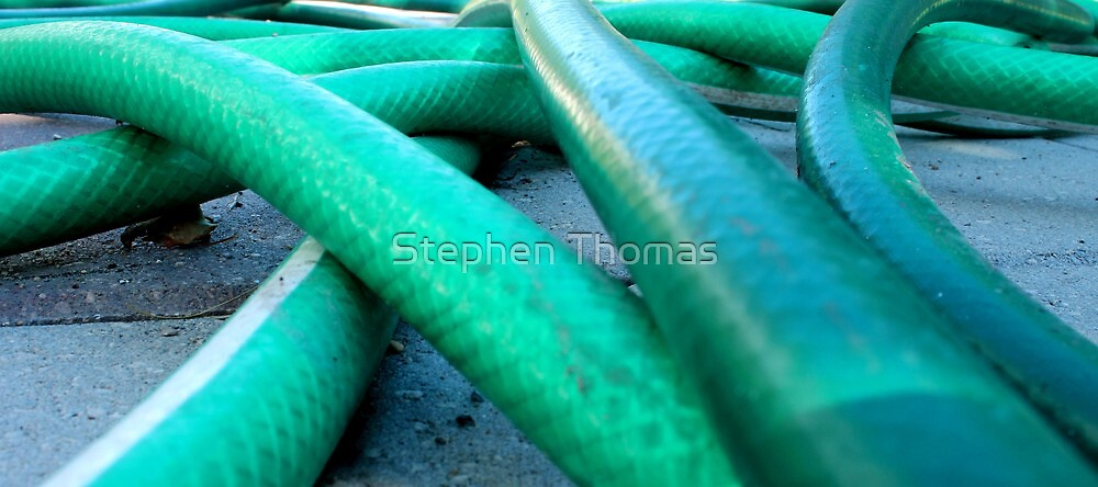 A Mess of Hose by Stephen Thomas